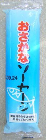 20080719_8_2