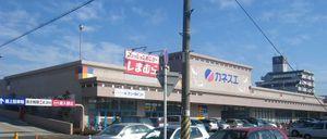 20081220kanesue_shinsei