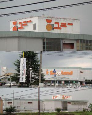 20090905piago_kani