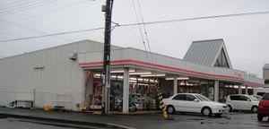 20100411_3