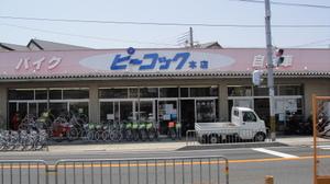 20100612_13