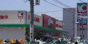 Okiwa_matsusaknagatuki_2