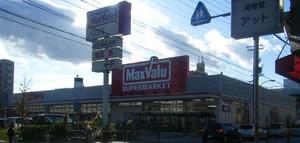 20081227maxvalu_hatooka