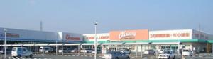20081212gyutora_kakihana