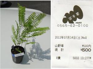 20120714_17