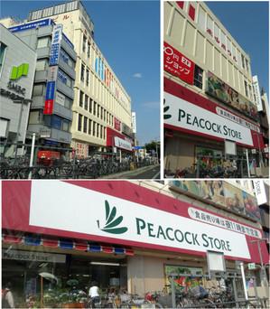 20130504peacock_store_motoyama