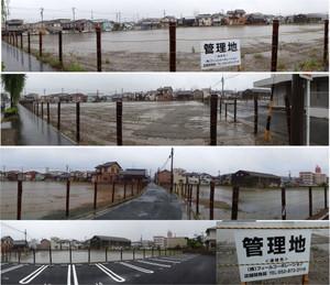 20130511feel_hamamatu_nitu
