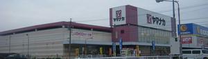 20081115yamanaka_shibata