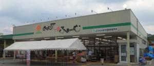 ●20130727およりてふぁーむ jashinshu minami oyorite farm