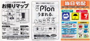Pion_3
