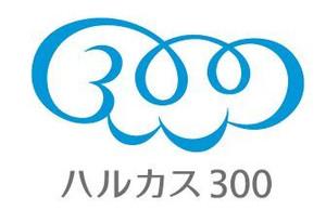 300_2