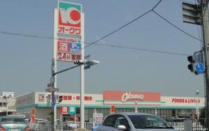 20110411オークワ田原本店
