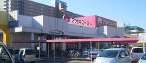 20081202aoki_super_kiba