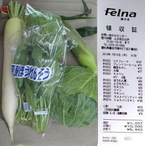 ★野菜とレシート購入商品20140710カネスエ フェルナ陣中店 (22)