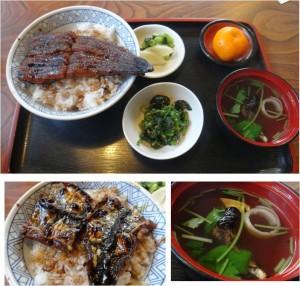 ★うな丼定食 ランチ うなぎの大国(安城市)20141115  (5)