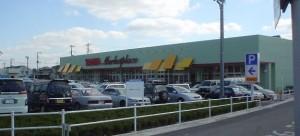 20031009ヤオコー行田藤原店