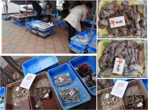 ●鮮魚テント20150307道の駅 筆柿の里 幸田