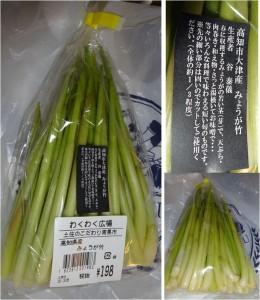 ★高知産みょうが竹購入商品20150329農場長 田畑耕作ソラト大府 (3)