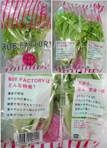 ★808工場野菜 購入商品 スーパーカネハチ片岡店20150411 (8)