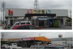 ■ペット20150820カーマ瀬戸店 (6)