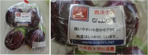 ★購入商品 西洋ナス セブラ20150901およりてふぁーむ農産物直売所JAみどりの広場 (2)