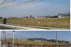 ◆20150915オークワ幸田店 (2)
