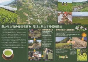 パンフ 世界農業遺産 菊川茶-2
