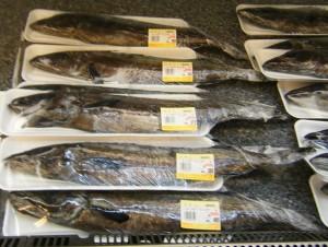 20090221太地漁協スーパー ・鮮魚・太地港 ヨロリ-2