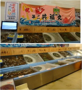 ■店内活ズワイガニ2-2 0160122大漁市場なかうら (4)