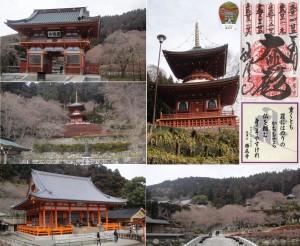●20110129 23-06勝尾寺
