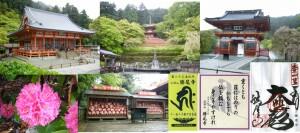 ●20090425応頂山・勝尾寺