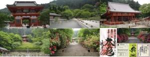 ●20100522 勝尾寺
