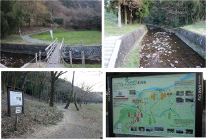 ■カタクリ群生地へ向かう 可児川下流域自然公園(岐阜県可児市)20160326 (44)