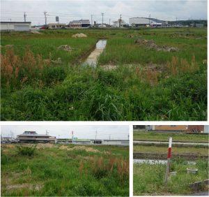 ■1. 西側 スーパーサンシ・コメリ明和町20160503 (7)