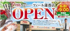 フィール蒲郡店 チラシ-オープンロゴ