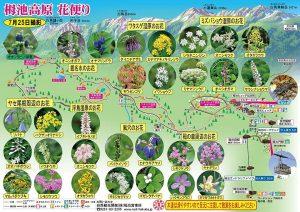 栂池自然園 20160725撮影
