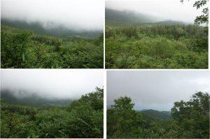 ◆浮島湿原方面展望湿原から下山中の景色20160723 (21)