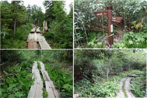 ◆木道 展望湿原から下山中の景色20160723 (73)